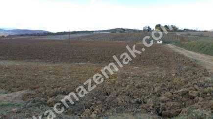 330 Dönüm Satılık Tarım Ve Sanayi Kullanıma Uygun Arazi 18