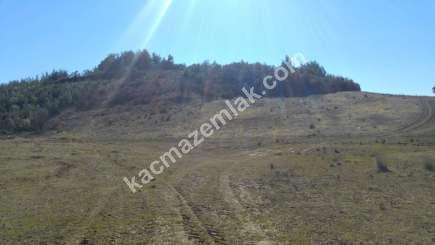Mudanya Çepni Köyünde Yola Cephe Satılık Tarla. 2