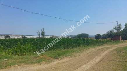 Mudanya Küçükyenice Mahallesin De Satılık Arazi 2