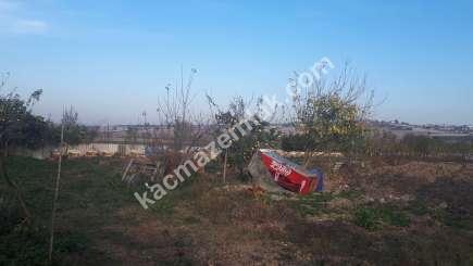 Nilüfer Gökçeköy Mah Satılık Uygun Fiyat Tarım Arazisi 3