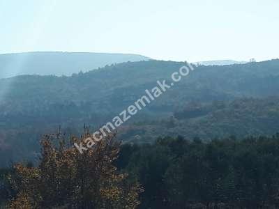 Nilüfer Hasanağa Mah Satılık Arazi 2