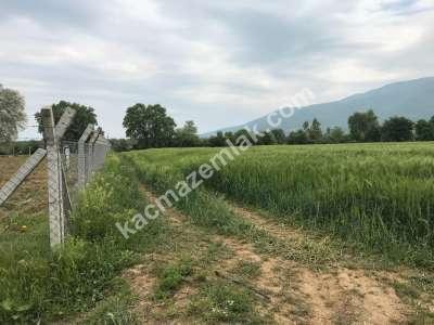 Orhangazi Gürle Köyünde Tarıma Uygun Satılık Tarla 6