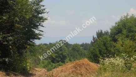 Orhangazi Yeniselöz Köyünde 4.800 M2 Acil Satılık Tarla 5