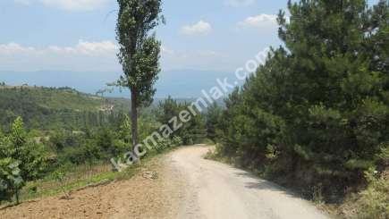 Orhangazi Yeniselöz Köyünde 4.800 M2 Acil Satılık Tarla 12