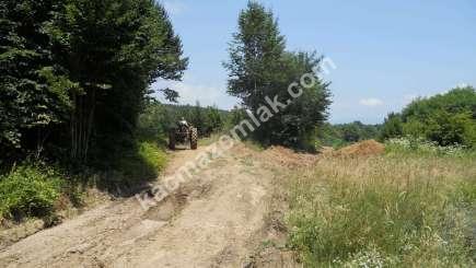 Orhangazi Yeniselöz Köyünde 4.800 M2 Acil Satılık Tarla 3