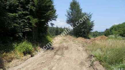 Orhangazi Yeniselöz Köyünde 4.800 M2 Acil Satılık Tarla 13