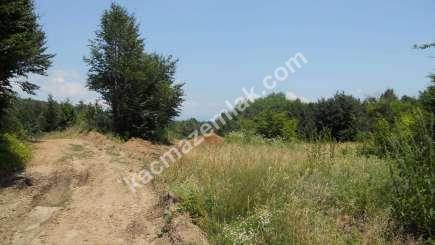 Orhangazi Yeniselöz Köyünde 4.800 M2 Acil Satılık Tarla 9