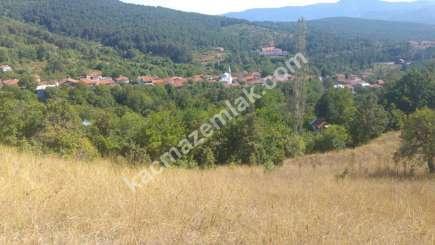 Osmangazi İlçesi Soğukpınar Mah.köye Yakın Satılıktarla 11