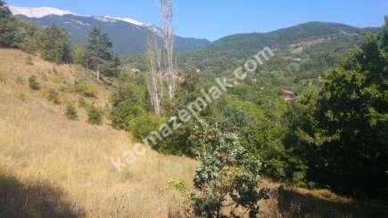 Osmangazi İlçesi Soğukpınar Mah.köye Yakın Satılıktarla 15