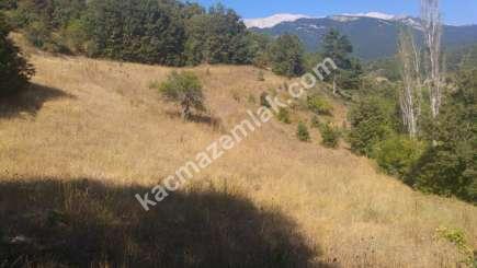 Osmangazi İlçesi Soğukpınar Mah.köye Yakın Satılıktarla 6