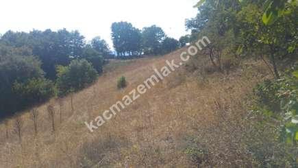 Osmangazi İlçesi Soğukpınar Mah.köye Yakın Satılıktarla 10