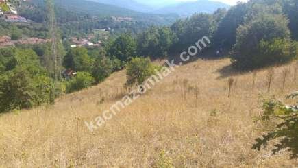 Osmangazi İlçesi Soğukpınar Mah.köye Yakın Satılıktarla 13