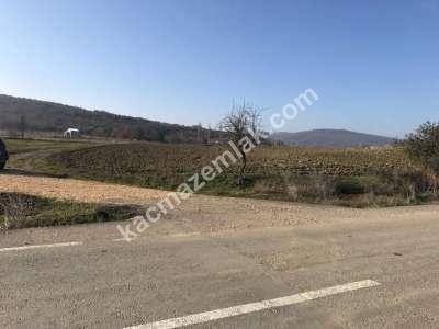 Yenişehir Fethiye Köyü/Mah Satılık Arazi Tarla 5