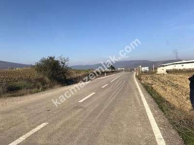 Yenişehir Fethiye Köyü/Mah Satılık Arazi Tarla 4