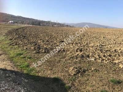Yenişehir Fethiye Köyü/Mah Satılık Arazi Tarla 2