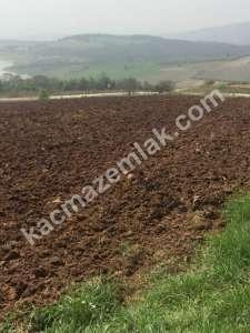 Yenişehir Süleymaniye Köyü Satilik Tarla Arazi. 3