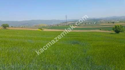 Yenişehir Bursa Yoluna 200 Mt Toprakocak Mh Sat Tarla 5