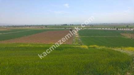 Yenişehir Bursa Yoluna 200 Mt Toprakocak Mh Sat Tarla 15