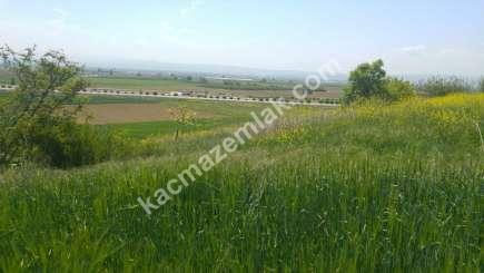 Yenişehir Bursa Yoluna 200 Mt Toprakocak Mh Sat Tarla 1