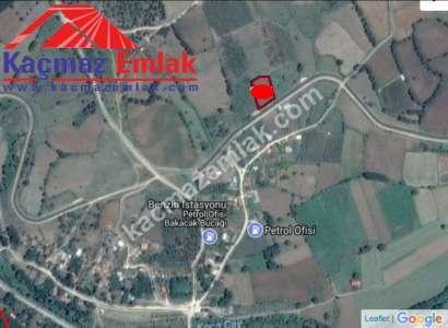 Biga Bakacakta Köye Yakın Yol Üzeri Satılık Tarla Arazi