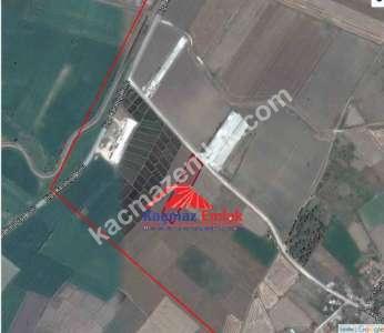 Biga Çınarköprü De Satılık Tarla, Arazi