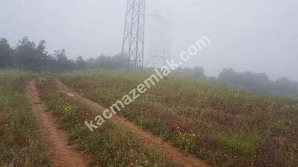 Biga Dikmen Köyünde Yol Üstü Satılık Tarla, Arzi 7