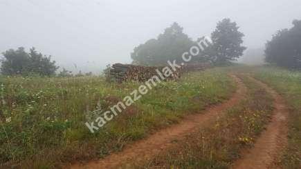 Biga Dikmen Köyünde Yol Üstü Satılık Tarla, Arzi 8