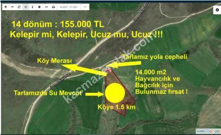 Biga'da Köye Yakın, Yola Ve Meraya Bitişik Satılık Tar 1