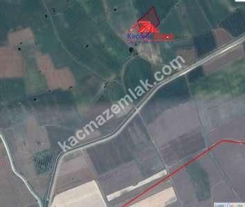Biga Eskibalıklı Köyünde Satılık Tarla