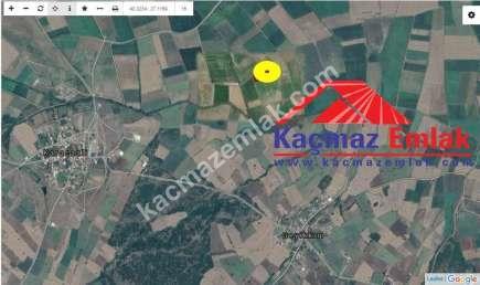 Biga Geyikkırı'nda Satılık 8.500 M2 Elma Bahçesi 2