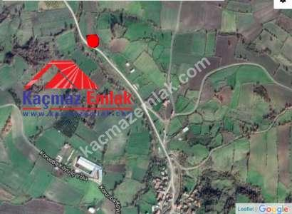 Biga Koruoba Köyünde Yol Üstü Satılık Tarla