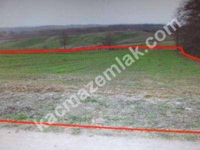 Diyarbakır Urfayolu Pirinçlik Te Satılık 11.500.dönüm M 5