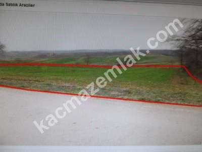 Diyarbakır Urfayolu Pirinçlik Te Satılık 11.500.dönüm M 2