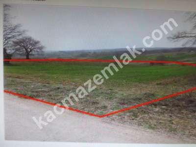 Diyarbakır Urfayolu Pirinçlik Te Satılık 11.500.dönüm M 1
