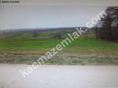 Diyarbakır Urfayolu Pirinçlik Te Satılık 11.500.dönüm M 3