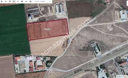 Karaman'da Satılık Tarla 1