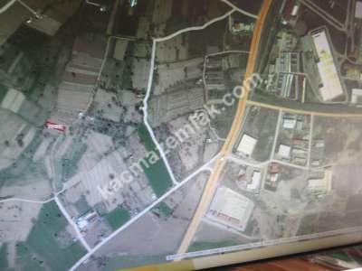 Develi Güneyaşagı Mah Sarayhalı Karşısı M2 500 Bahçe 9