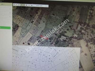 Develi Güneyaşagı Mah Sarayhalı Karşısı M2 500 Bahçe 6