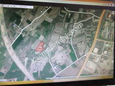 Develi Güneyaşagı Mah Sarayhalı Karşısı M2 6,310 Tarla 1