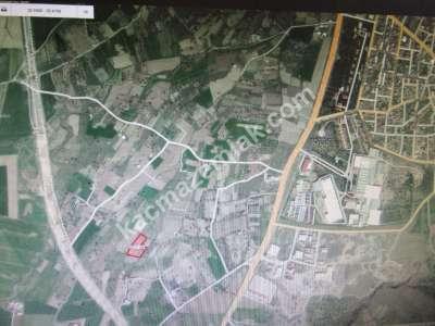 Develi Güneyaşagı Mah Sarayhalı Karşısı M2 6,310 Tarla 5