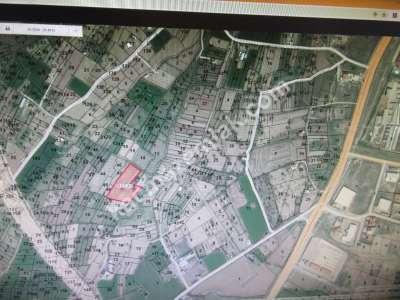 Develi Güneyaşagı Mah Sarayhalı Karşısı M2 6,310 Tarla 4