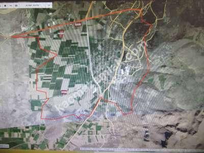 Develi Güney Aşağı Mahallesi 3 Adet Satılık Büyük Tarla 2