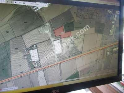Develi Reşadiye Mah Ana Yola Yakın Tarla M2 11412 2