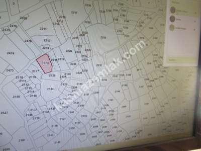 Develi Zile Mah Satılık 895 M2 Tarla 3