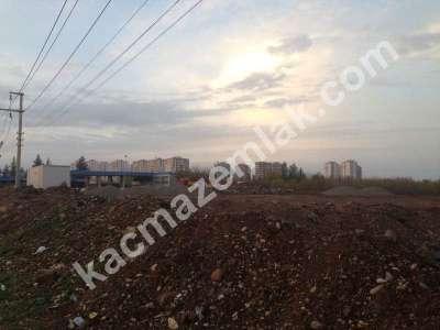 Diyarbakır Elazığ Yolunda Yola Sıfır İmar Sınırında Aci 2