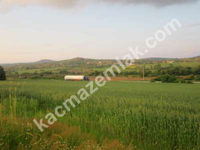 Edirne Demirköy'de Yatırımlık 18 Dönüm Arsa 3