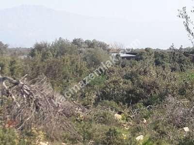 Seyrantepe De Satılık Arsa Doğa Manzaralı 3
