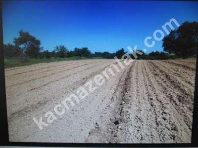 Diyarbakır Karabaş Mah.satılık Yatırım Amaçlı 27.dönüm 3
