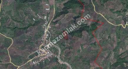 Gemlik İlçe Muratoba Köyü Mah Satılık Zeytinlik Arazi 2