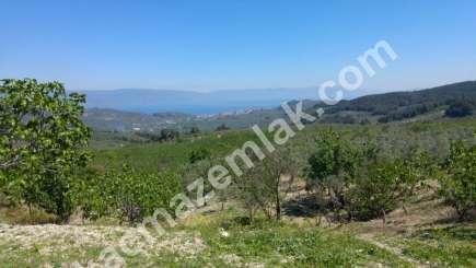 Mudanya,çepni Köyünde Deniz Manzaralı Satılık Arazi 2